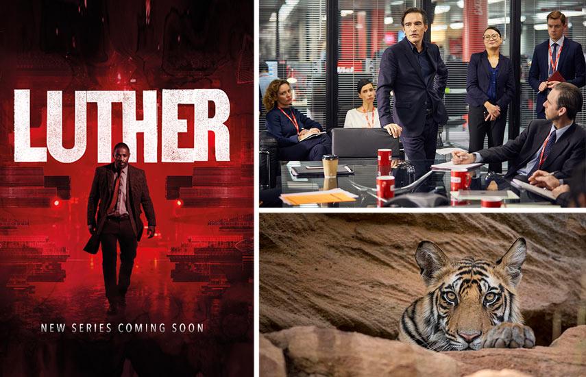 """En la nueva oferta destacan series dramáticas como """"Luther"""" y documentales como """"Dynasty"""", sobre animales icónicos del planeta."""