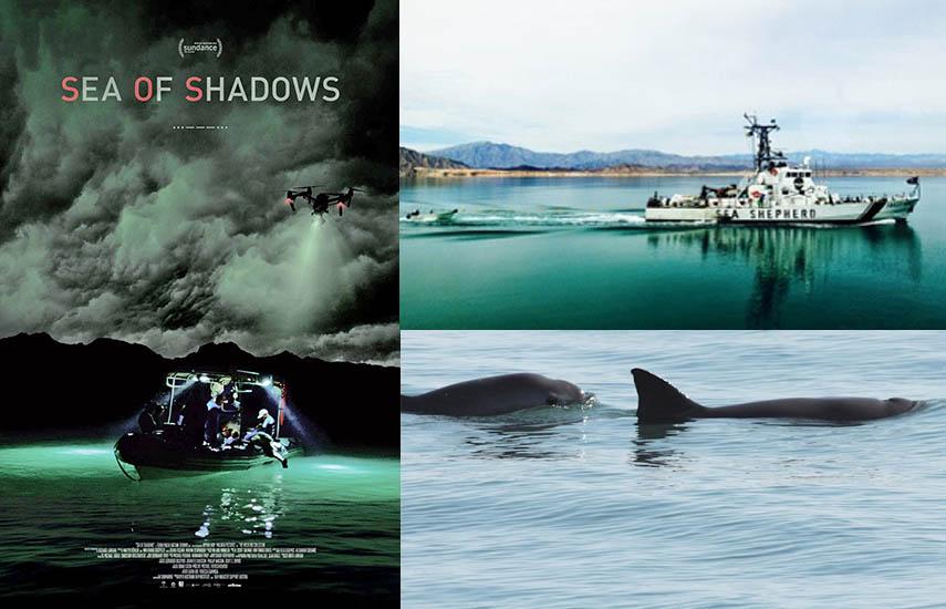 """Durante su estreno mundial el pasado 27 de enero en el marco del festival de Cine de Sundance, fue aclamado por la crítica y resultó ganador del """"Audience Award"""" en el """"World Cinema Documentary""""."""